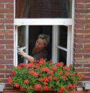 Fenster Wartung und Pflege